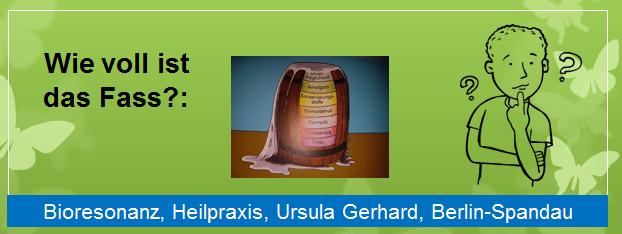 Gerhard - Bioresonanz - Fassmodell