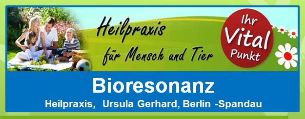 Ursula Gerhard - Bioresonanz