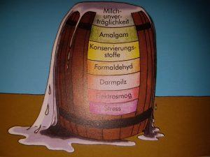 Allergie Stoffwechsel Bioresonanz - Heilpraktikerin Spandau