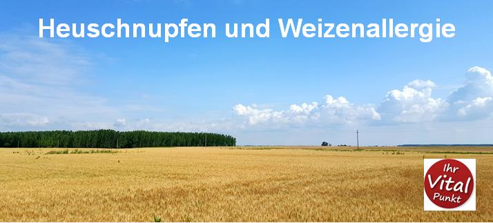 Heuschnupfen und Weizenallergie - Heilpraxis Ihr Vitalpunkt