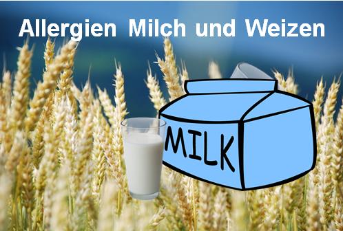 Allergien Milch und Weizen - Heilpraxis Spandau
