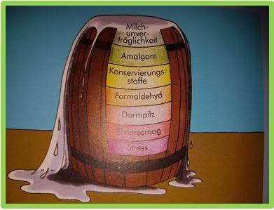 Tierhaarallergie und Bioresonanz