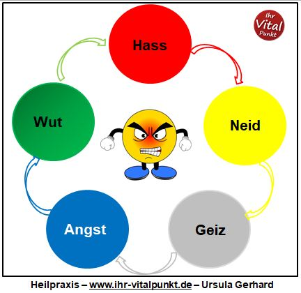 Emotionen heilen mit den 5 Elementen der TCM